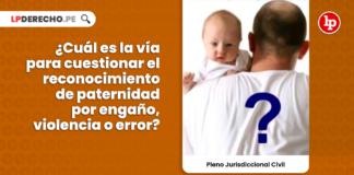 Cual es la via para cuestionar el reconocimiento de paternidad por engaño, violencia o error-civil-LP