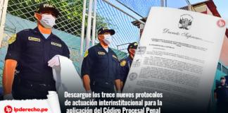 protocolos actuacion interinstitucional procesal penal