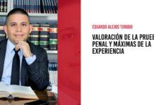 Valoración de la prueba penal y máximas de la experiencia, por Eduardo Alejos Toribio