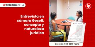 Entrevista en camara gesell-concepto-y-naturaleza-juridica-LP