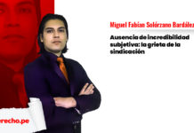 Miguel-Fabián-Solórzano-Bardález-LP