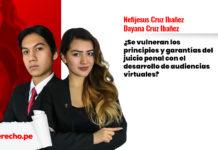 principios juicio penal virtuales