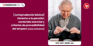Jurisprudencia basica-derecho a la pension -contenido esencial y criterios de procedibilidad del amparo-caso Anicama-constitucional-LP