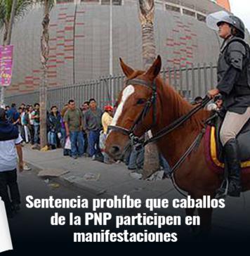 caballos policia montada