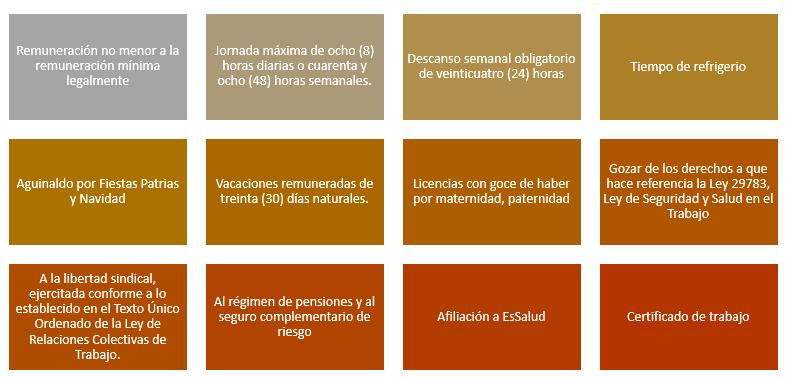 Derechos del régimen CAS