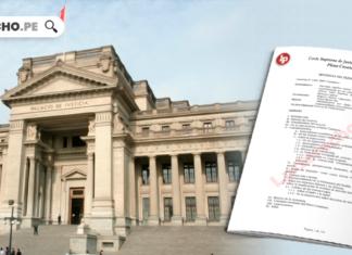 descargue en pdf plenos civiles-LP