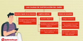 Esquema sobre Inexistencia responsabilidad (causas de justificación del daño)