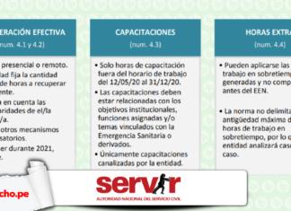 Informe 1031-2020-Servir-GPGSC con logo LP