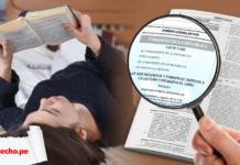 Ley 31053 persona leyendo libros con logo lp