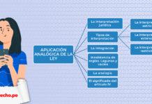 aplicación analógica de la ley. Código Civil