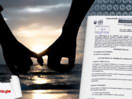 dos manos agarradas Proyecto de Ley 6636-2020-CR régimen sociedad solidaria con logo lp