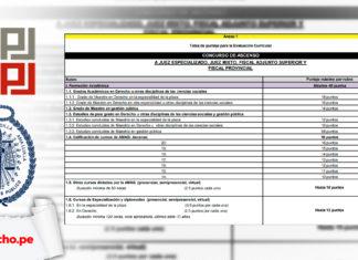 puntajes de la evaluación curricular para el nombramiento de jueces y fiscales