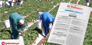 trabajadores agrarios con norma legal y pestaña lp