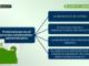 Pretensiones en el proceso contencioso-administrativo