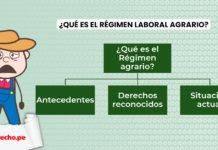 régimen laboral agrario con logo LP