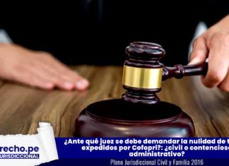 Ante-que-juez-se-debe-demandar-la-nulidad-de-titulos-expedidos-por-Cofopri con logo de jurisprudencia pleno casatorio y LP