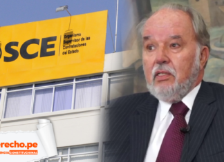 Jurisprudencia contitucional Domingo Garcia Belaunde OSCE con logo de LP