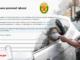 Solicita pase laboral 2021 cuarentena con logo de LP