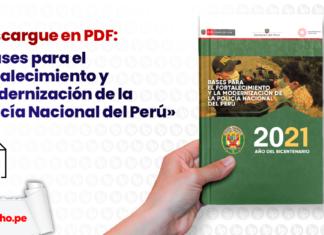 Bases para el fortalecimiento y modernización de la Policía Nacional del Perú