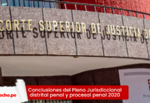 Conclusiones del Pleno Jurisdiccional distrital penal y procesal penal 2020