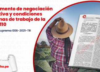 Reglamento de negociación colectiva y condiciones minímas de trabajo de la Ley 31110