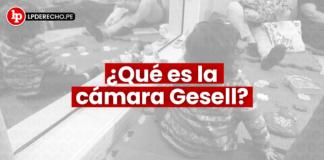 Cámara Gesell: qué es, para qué sirve y por qué se llama así