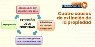 Cuatro causas-extincion-de la propiedad-LP