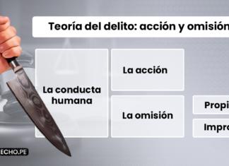 La acción y omisión en la teoría del delito-LP