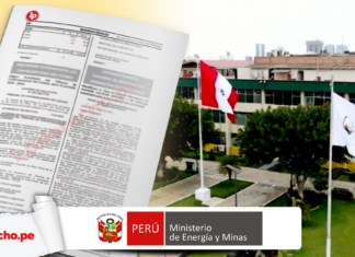 Ministerio de Energia y Minas norma legal Minem con logo de LP