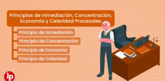 Principios de Inmediación, Concentración, Economía y Celeridad Procesales: Artículo V del Título Preliminar del Código Procesal Civil