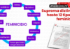 Suprema-distingue-hasta-doce-tipos de - feminicidio-esquema-LP