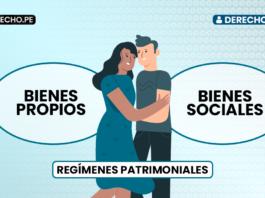 Los bienes propios y los bienes sociales en el Código Civil peruano