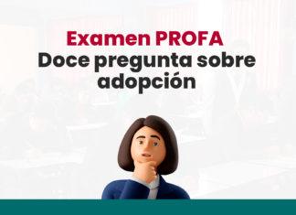 Examen PROFA: Doce preguntas sobre adopción