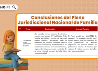 Conclusiones Pleno Jurisdiccional Nacional de Familia 2021 con logo de LP