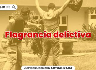 Flagrancia delictiva - LP