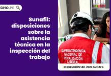 Sunafil: disposiciones sobre la asistencia técnica en la inspección del trabajo