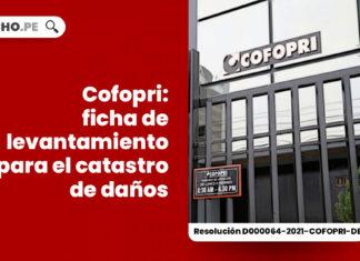 cofopri-ficha-levantamiento-catastro-danos-resolucion-d000064-2021-cofopri-de-LP