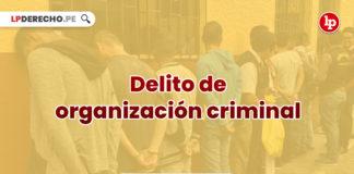 delito-organizacion-criminal-LPDERECHO