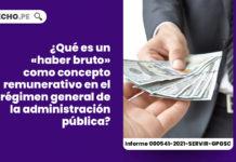 haber-bruto-concepto-remunerativo-regimen-general-administracion-publico-LP