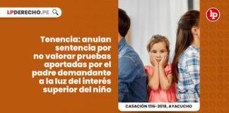 tenencia-anulan-sentencia-no-valorar-pruebas-aportadas-padre-demandante-luz-interes-superior-nino-LP