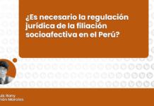 Es necesario la regulación juridica de la filiacion socio afectiva en el Perú con logo de LP