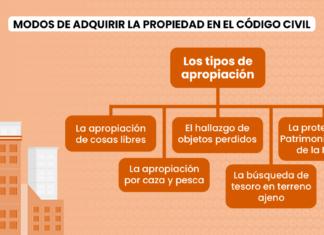 Modos de adquirir la propiedad en el Código Civil peruano: Los tipos de apropiación
