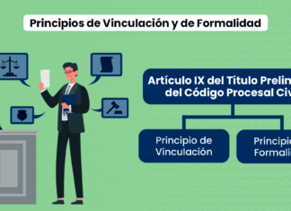 Principios de Vinculación y de Formalidad: Artículo IX del Título Preliminar del Código Procesal Civil