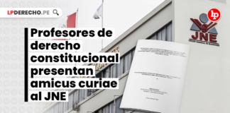 Profesores de derecho constitucional presentan amicus curiae al JNE - LP
