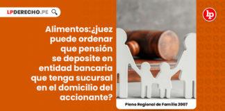 alimentos-pension-conclusiones-del-pleno-jurisdiccional-regional-de-familia-lima-2007-LP