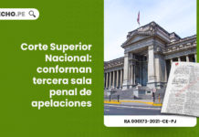 corte-superior-nacional-conforman-tercera-sala-penal-apelaciones-resolucion-administrativa-000173-2021-ce-pj-LP