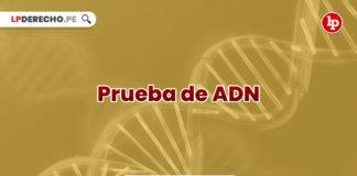 jurisprudencia-actual-relevante-prueba-adn-LP