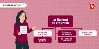 libertad-empresa-LP