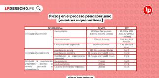 plazos-proceso-penal-peruano-cuadros-esquematicos-LP