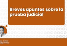 Breves apuntes sobre la prueba judicial con logo de LP